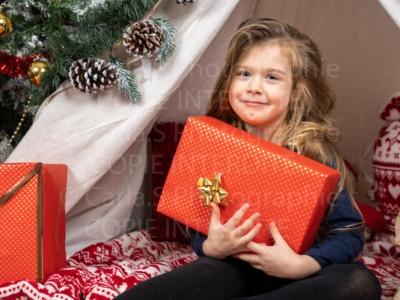 Protégé: Noël – Erika